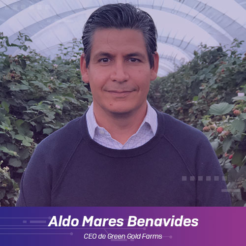 Aldo Mares Benavides